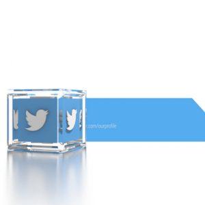 social_icons_cube_twitter_social_icons_cube_twitter_preview.jpg